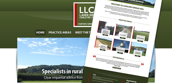 Landline Consulting Website