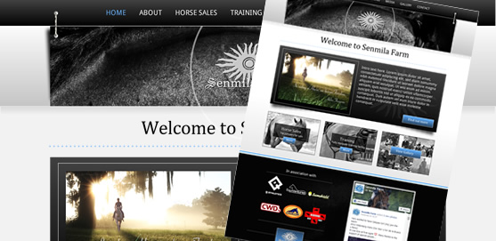 Senmila Fram Website